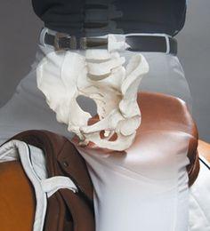 """In Zusammenarbeit mit dem Technologie-Entwicklungszentrum """"Biomex"""" der Klinik Gut, Swiss Leading Hospital for Orthopedics, Accident care and Sports, St. Moritz und Profireitern hat das Unternehmen STÜBBEN ein neuartiges Sattelsitzdesign entwickelt, das ein gesundes, Rücken entlastendes Sitzen und Reiten ermöglichen soll."""