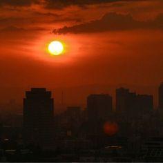2012/06/23 Photo Diary: Sunset  At sunset, sun paint sky beautiful red-orange world. I felt that nature is the greatest creator.  日の入りの時に、太陽が創り出す、赤橙の世界。自然は偉大なクリエイターだと思います。  2012/06/23 Photo Diary / Photo / NIKON D3100 /  Sunset / Tokyo  NIKON D3100, 18-200mm f3.5-6.3 (F/9, ISO400, 1/160s, -1.33ev)