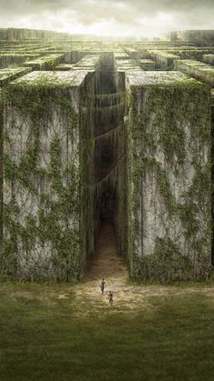 ↑↑TAP AND GET THE FREE APP! Movies For Geeks The Maze Runner Fantasy Walls Green HD iPhone 6 Wallpaper