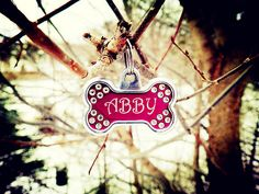Abby by Cattura - I think somebody found Abby's lost name tag :). Hope you will see it soon, Abby. Objects, Greeting Cards, Lost, Wall Art, Christmas Ornaments, Holiday Decor, Christmas Ornament, Christmas Topiary, Wall Decor