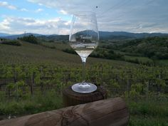 Looking through the soul of our land. Italian Wine, White Wine, Landscape Photography, Vineyard, Alcoholic Drinks, Italy, Country, Glass, Italia