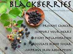 Blackberries super antioxidant  helps our bodies  fight free radicals.    www.naturesupplies.co.uk