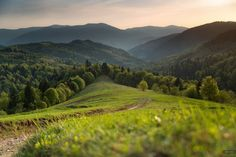 Spring in the Carpathian Mountains, Ukraine photo 20