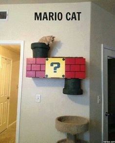 Awesome cat perch/ toy (:
