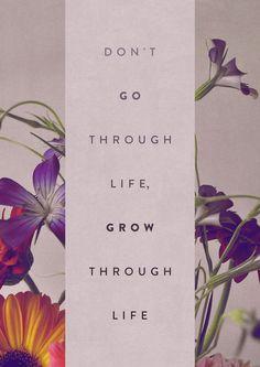 don't go through life, grow through life http://www.4myprosperity.com/the-2-week-diet-program/
