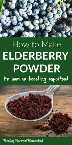 What can you do with your elderberry harvest besides making jam? One of the things you can make is homemade elderberry powder. This powder stores Elderberry Powder, Elderberry Syrup, Elderberry Ideas, Healing Herbs, Medicinal Herbs, Natural Health Remedies, Herbal Remedies, Natural Medicine, Vegetarian