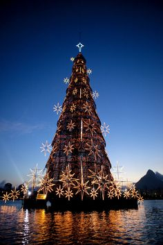 World's largest floating Christmas Tree, Rio de Janeiro, Brazil. Christmas Tree Light Up, Christmas In The City, Christmas Scenes, Holiday Lights, Christmas Love, Xmas Tree, Beautiful Christmas, Winter Christmas, Merry Christmas
