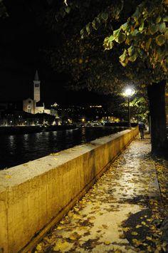500  Lungadige, Verona, Veneto ( foto di Daniela Alessi )