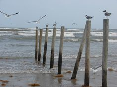 Galveston, TX Say what you want about it, I was raised spending summer vacations here and I love it :)