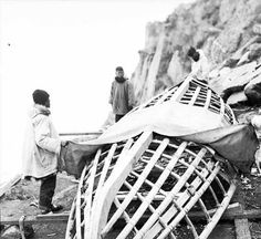 [Eskimo men laying skins over umiak frame.] :: Alaska State Library-Historical Collections,  	Kenneth Chisholm Photograph Collection, 1930-1938