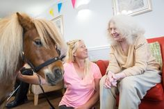 A galloping birthday surprise for Jacqueline - Riversway Care Home Bristol