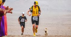 Stray Dog Joins 155-Mile Race, Finishes It With A New Dad | Bored Panda