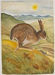 pauline bewick drawings - Google Search