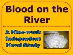 independent novel study essay