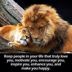 What kind of people do you have around you? #followthelion #globallion #lionwisdom