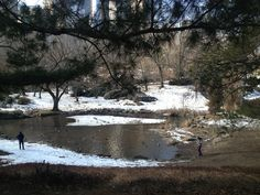 Central Park, NYC 2013