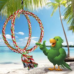 """Paco's Whirl & Twirl Double Ring Ball PA9700  use Coupon Code PA9700  7.5"""" W X 12"""" H $5.45  7.5"""" W X 16"""" H $17.45  http://birdcages4less.com/page/B/PROD/Pacos-Playhouse/PA9700"""