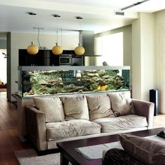 Kücheninsel Aqua Mit Integriertem Aquarium | Kitchen | Pinterest | Aquariums,  Room Ideas And Interiors