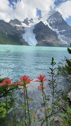 How to Hike the Berg Lake Trail in Mount Robson Provincial Park - The Banff Blog