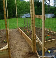 A raised garden with a fence to keep the deer out!