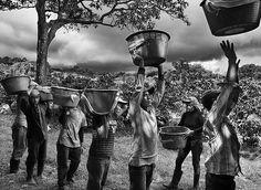 Imagem do livro Perfume de Sonho, do fotografo brasileiro Sebastiao Salgado, publicado pela editora Paisagem. Foto: © Sebastiao SALGADO / Amazonas ***DIREITOS RESERVADOS. NÃO PUBLICAR SEM AUTORIZAÇÃO DO DETENTOR DOS DIREITOS AUTORAIS E DE IMAGEM***