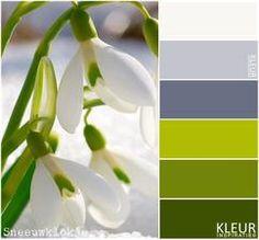 SNEEUWKLOKJE - Kleurenpalet groen. Begin van het voorjaar