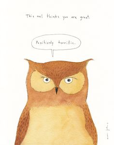 this owl thinks you are great — Marc Johns