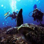 Leren duiken op Gili Trawangan, Lombok