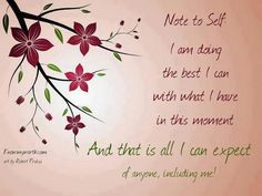 Doing the Best I Can and that is all I can expect with fibromyalgia/chronic pain