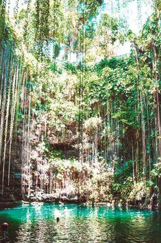 Se considera que en toda la península de Yucatán hay más de 2000cenotes. Riviera Mayatiene alguno de los más bellos como el de Il Kil, el de Suytun o el cenote azul. ¡Descubre más sobre Riviera Maya clicando en la imagen! Merida, Travel Blog, City Photography, Riviera Maya, Mayo, River, Spaces, Outdoor, Viajes