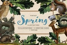 Vintage Spring Illustrations by re.source on @creativemarket