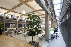 Houten trap met plantenbak geintegreerd, Mediatheek, Drachtsterlyceum, Drachten; ism ADP architecten.