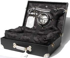 Luxury Luggage for Dogs- I would like this for travel and pet friendly hotels