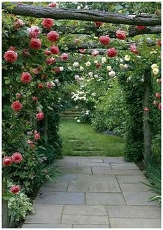 ~ Climbing plants allow you to take your garden to new heights when plante. Vines ~ Climbing plants allow you to take your garden to new heights when plante.Vines ~ Climbing plants allow you to take your garden to new heights when plante. French Cottage Garden, Cottage Garden Design, Modern Garden Design, Landscape Design, Modern Design, Rose Garden Design, Cottage Style, Contemporary Garden, White Cottage