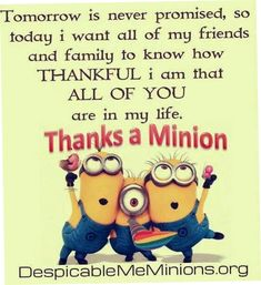 Today 35 Minion Quotes