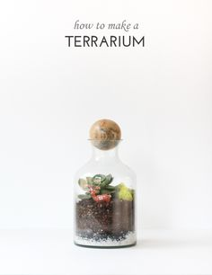 How to Make a Terrar