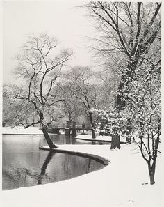 The Public Garden (in winter) 1962