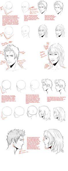 Male VS Female head-face tut by *WingedGenesis5