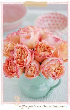 Priscilla: Centerpiece ideas_Coral, Peach, and Mint <3