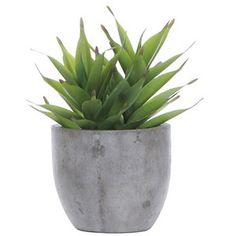 Lux Art Silks Succulent Grey Pot Silk Arrangement