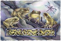 Bergsma Gallery Press :: Paintings :: Insects & Amphibians :: Frogs :: Knotty Frogs - Prints