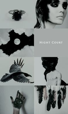 The Night Court is sleek and dark and lethal, and she near burns their darkness away with her light. She is born of light, and sunshine - the living embodiment of Dawn, and the sun rising in the world. A Court Of Wings And Ruin, A Court Of Mist And Fury, Sara J Maas, Crown Of Midnight, Empire Of Storms, Night Aesthetic, Throne Of Glass Series, Rhysand, Crescent City