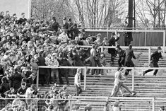 Police try to hold back Chelsea fans as violence breaks out at home to Liverpool in the FA Cup 5th round 1982 #CFC