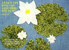 rice lotus