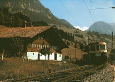509 - train