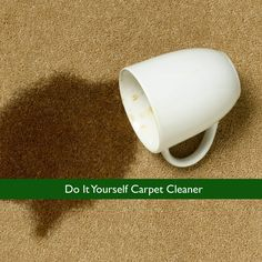 Do It Yourself Carpet Cleaner