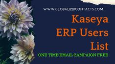 Our Kaseya ERP Technology Users Email List is one stop source for marketers to drive better campaigns with tighter focus and improved response rates from their multi-channel campaigns without increasing your costs.