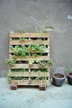 Love this vertical garden