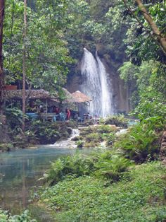 Check out our gallery of breathaking photos and discover why Dive Spot Asia is one of the Philippines' best travel destinations. Kawasan Falls, Cebu, Scuba Diving, All Pictures, Philippines, Travel Destinations, Waterfall, Asia, Gallery