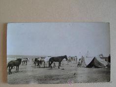 1912-1921 Marruecos español. Campamento de regulares. Escuadrón del Tabor de caballería. - Foto 1